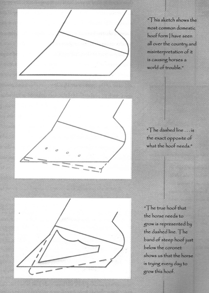 Talons bas pince longue – Pete Ramey