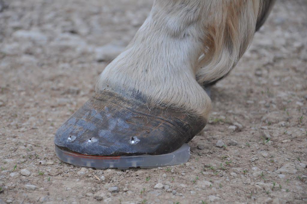 Les pieds: à lire